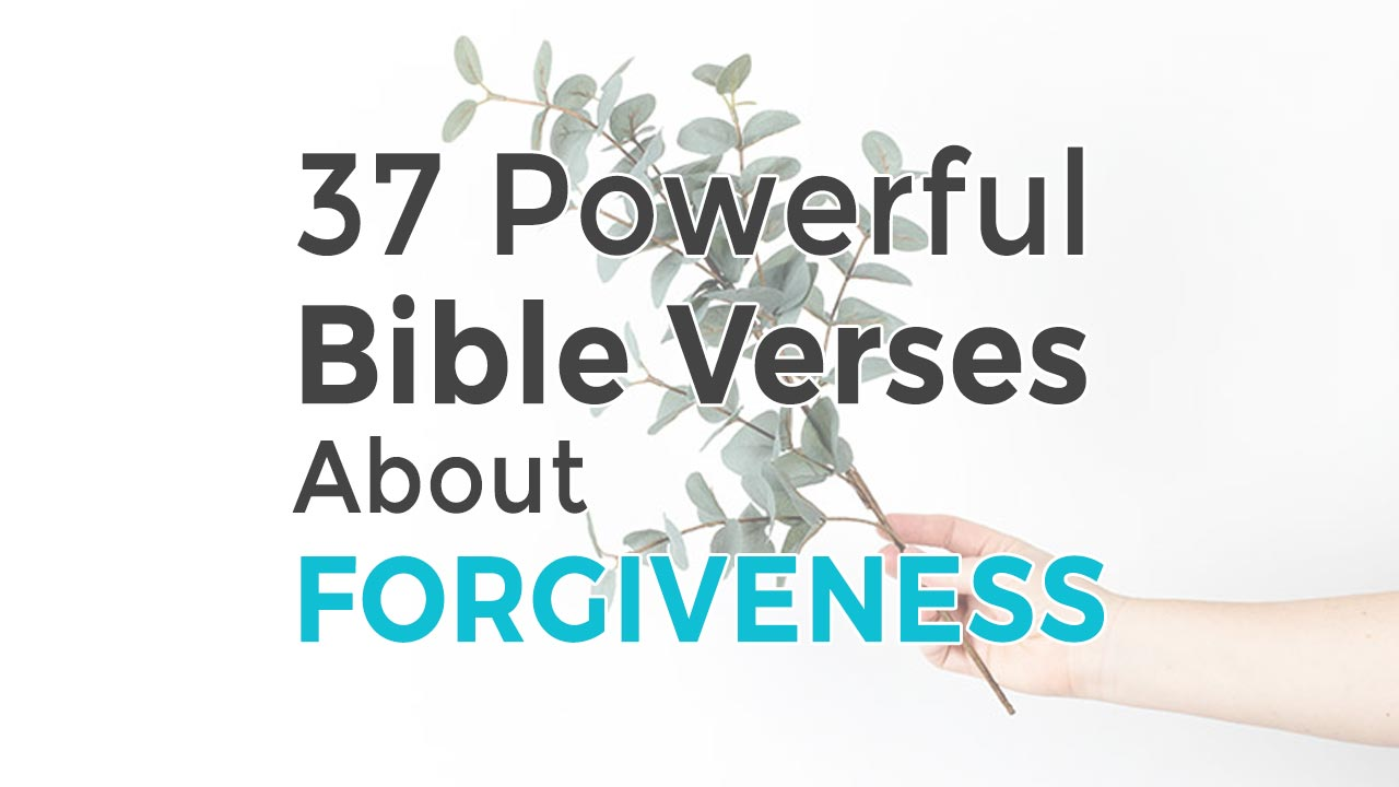 Learn About Forgiveness With 37 Bible Verses